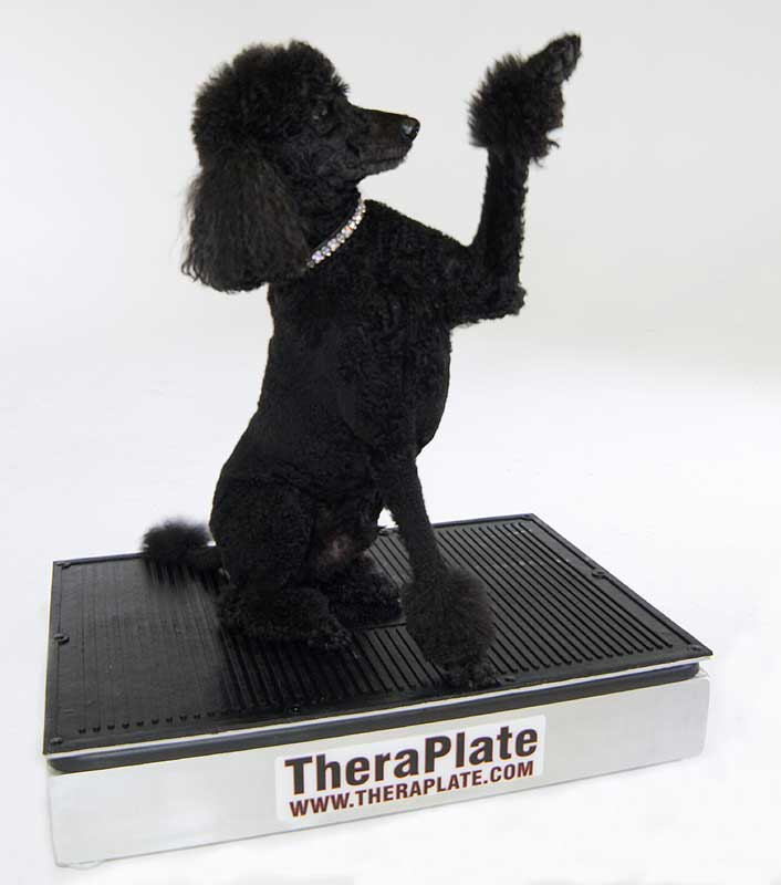TheraPlate Revolution K6 Pet Sized Model