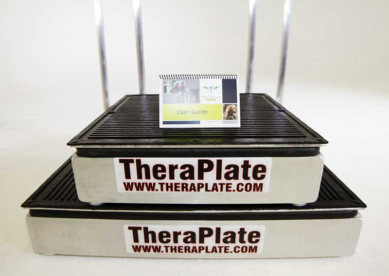theraplate  therapy  rehabilitation and sports